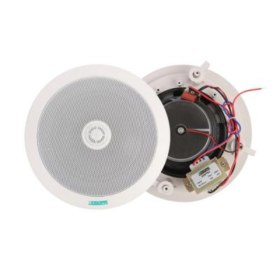 Two-way Ceiling Speaker