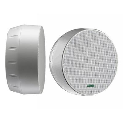 Surface Mount Ceiling Speaker