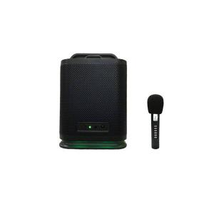 DSP5505R Bluetooth Speaker+Wireless Microphone
