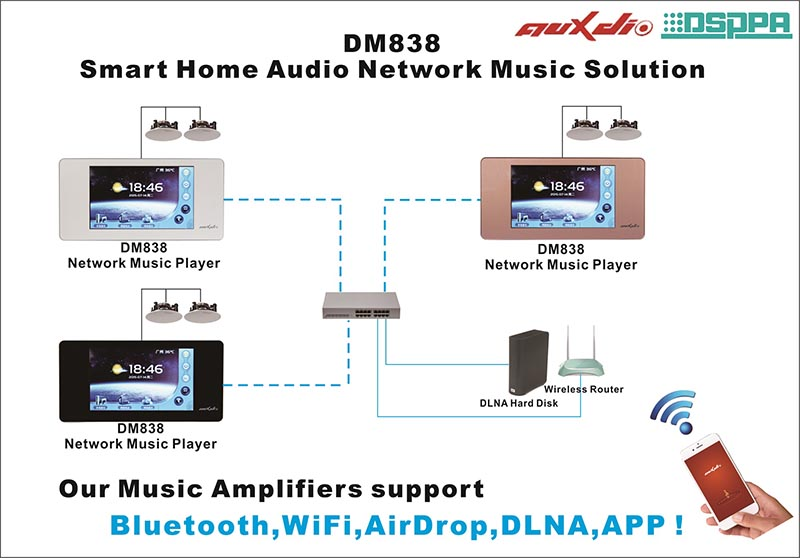 DM838 Network Music Player with Amplifier
