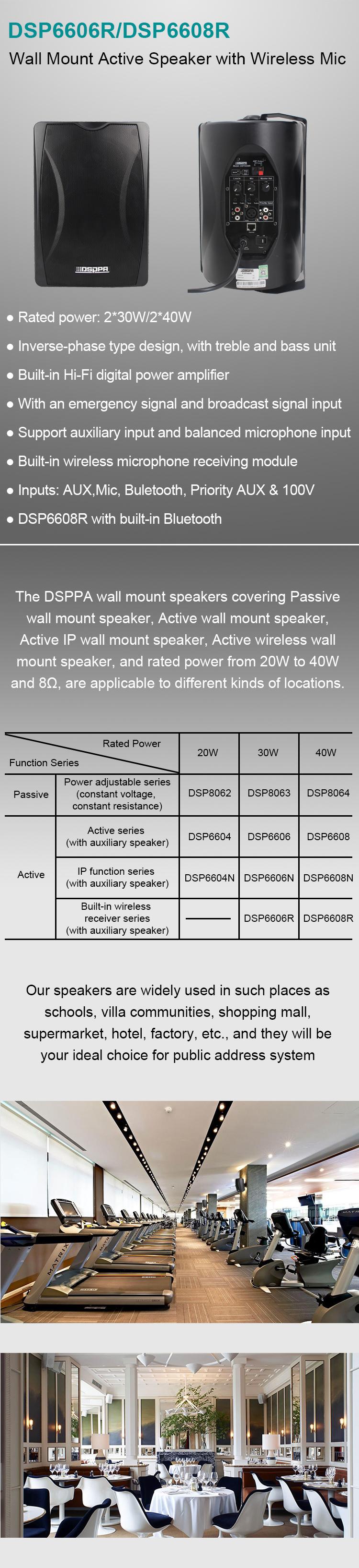 Loa treo tường DSP8063B 30W có vòi nguồn