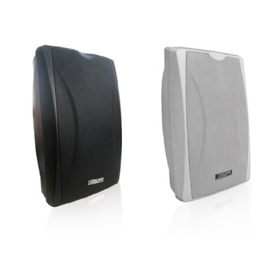 MAG2450 Dante Active Wall-Mounted Speaker