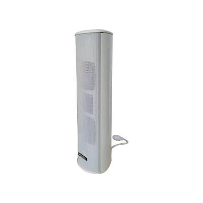 POE255 POE Network Weather-Resistant Column Speaker